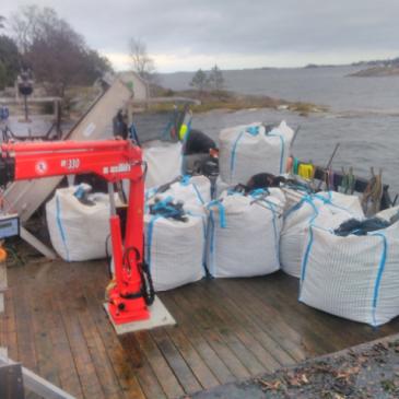 Första musselskörd på odlingen i Sankt Anna