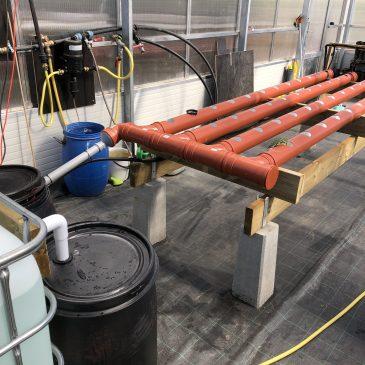 VCO bygger en enkel akvaponik