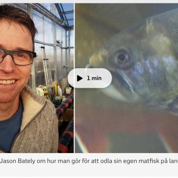 VCO pratade akvaponik på SVT Öst